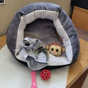 Small Dog Bed, Shirt, and Toy Package